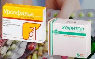 Урсофальк и Хофитол: что лучше предпочесть в терапии болезней печени