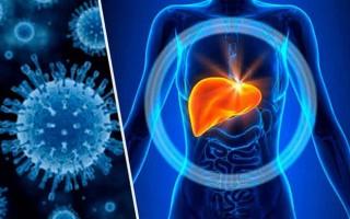 Осторожно – гепатит: какой самый опасный вид этой болезни, а какой может пройти самостоятельно