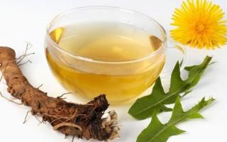 Корень одуванчика: лечебные свойства, рецепты и противопоказания