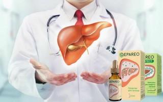 Натуральный состав Гепарео, его лечебное и профилактическое воздействие на организм
