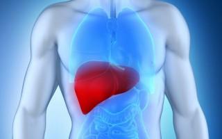 Как распознать развитие персистирующего гепатита