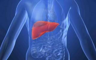 Опасность вирусного цирроза печени, и методы лечения болезни