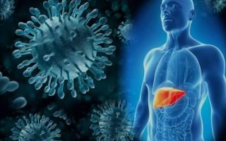 Описание хронического гепатита и способов лечения