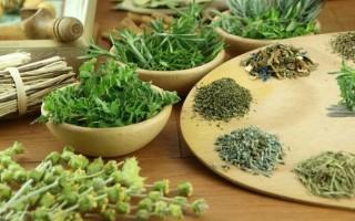 Народные средства: чем лечить поджелудочную железу и печень