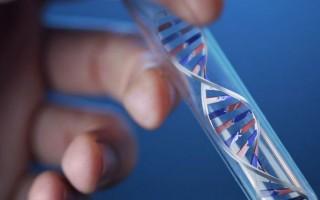 Назначение анализов крови при синдроме Жильбера и интерпретация их результатов