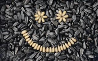 Жареные и сырые семечки: как влияют на печень, полезны или нет