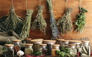 Эффективные рецепты с травами, растворяющими камни в желчном пузыре