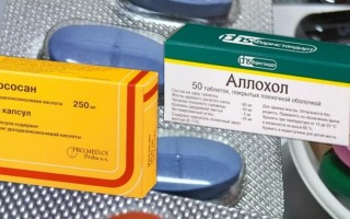 Лечение Аллохолом или Урсосаном: что лучше для печени