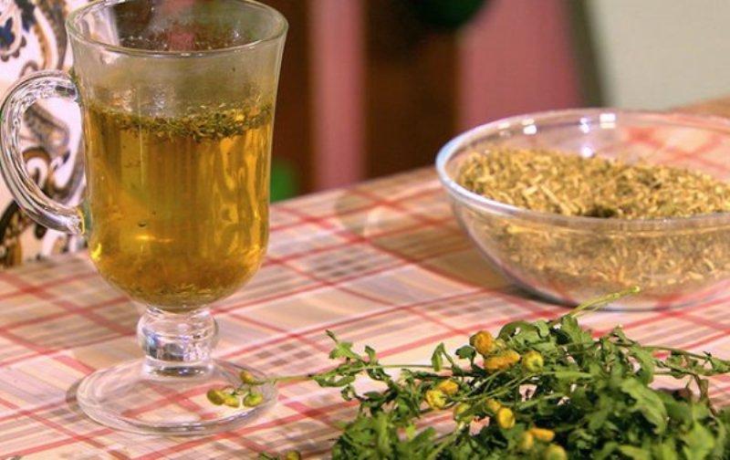 Желчегонные травы при застое желчи, холецистите, дискинезии, список лучших трав