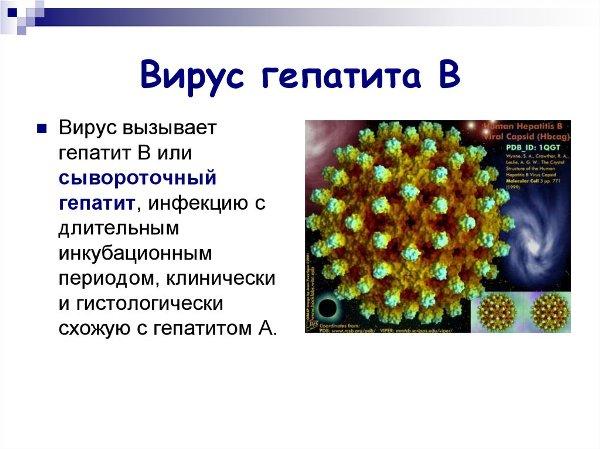Чем опасен вирус гепатита б