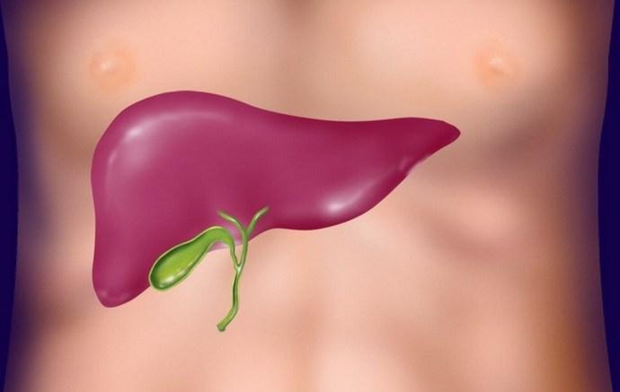 Дисфункция желчного пузыря чаще всего возникает из-за проблем с другими органами, в частности печенью.