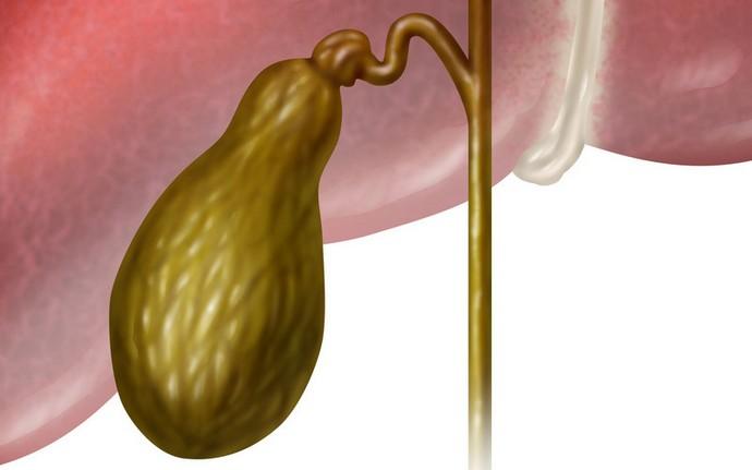 Желчный пузырь является очень важным органом, состояние которого прямо влияет на наше здоровье.