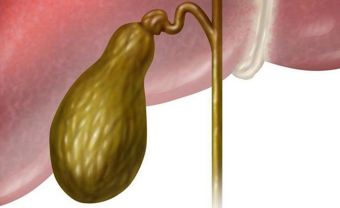 Если препараты дали необходимый эффект, желчь станет более жидкой, а пищеварение наладится.