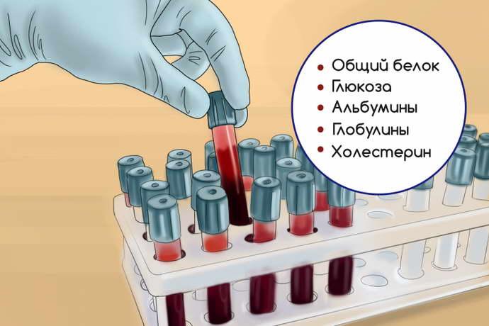показатели аланинаминотрансферазы