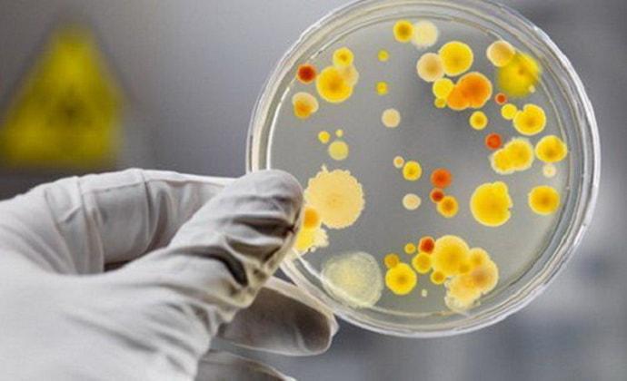 Происхождение и опасности парентерального вируса гепатита G