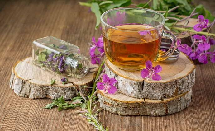 польза иван чай