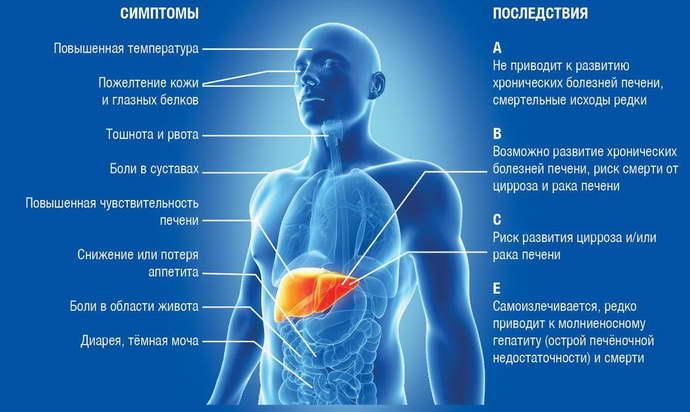 температура при гепатите с
