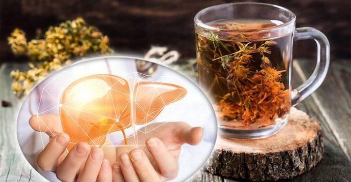 Есть определенные травы, которые издавна используются для лечения печени и поджелудочной железы.