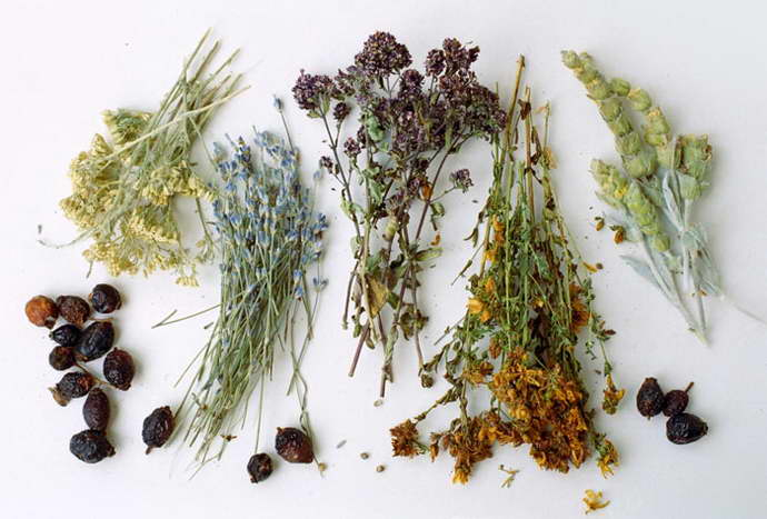 рецепт чая с травами при остром холецистите