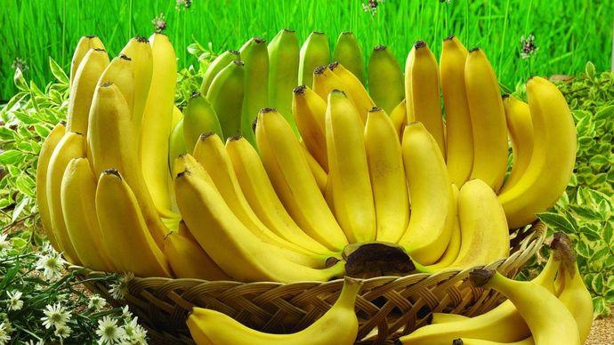 Бананы и печень как орган достаточно хорошо совместимы.