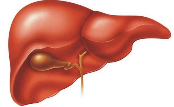 Важно понимать, что внутрипеченочный холестаз и холестатическая желтуха это не одно и то же.