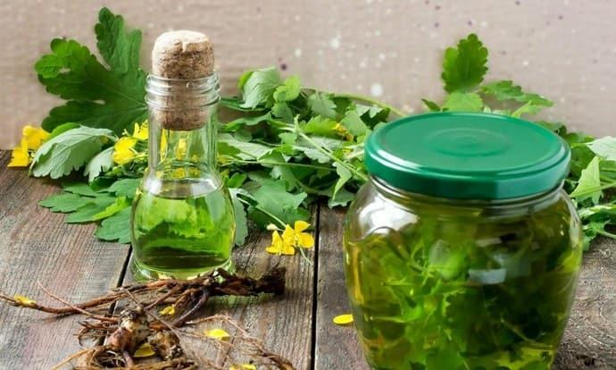 Настойку чистотела нужно принимать осторожно, так как растение ядовитое.