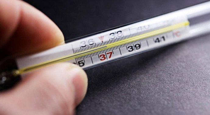 Температура печени человека — Здоровая печень